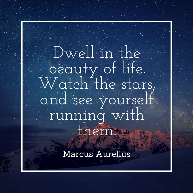 marcus aurelius quote feb 2016 usa today bestselling